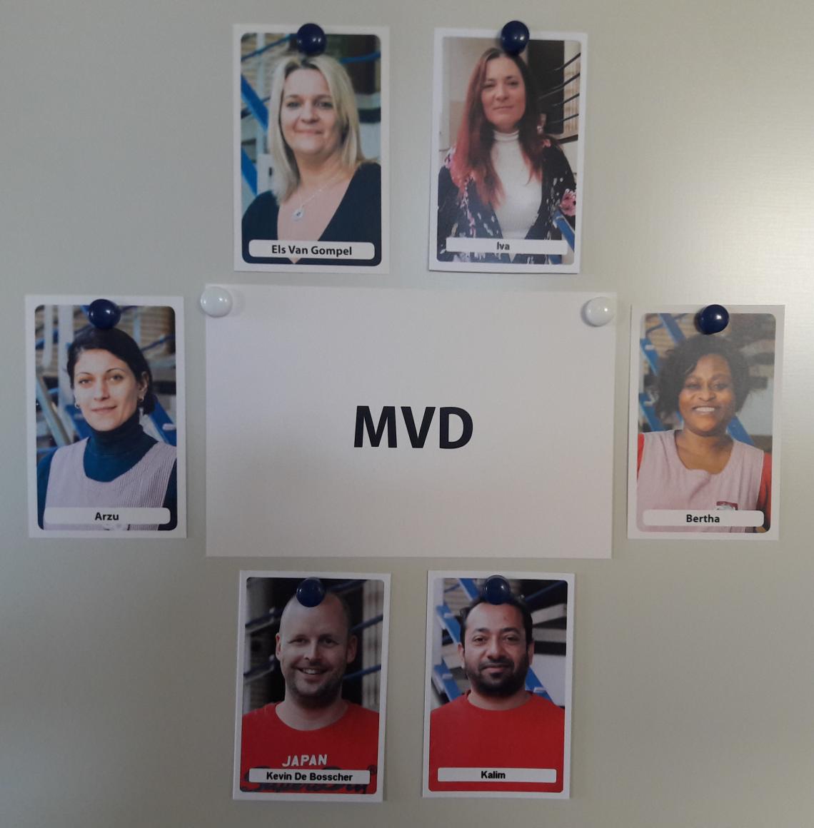 vakgroep mvd